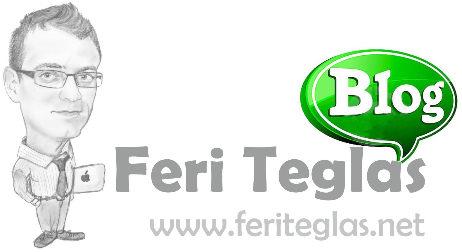 Feri Teglas Blog