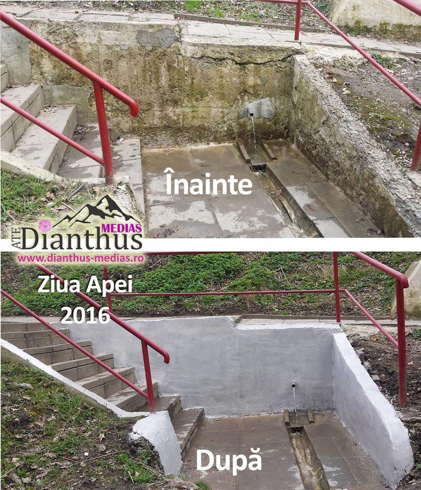 izvoare-dianthus-2016